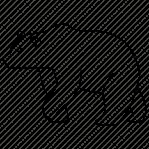 animal, bear, brown, grizzly, polar, wild, zoo icon