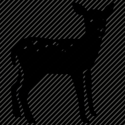 deer, doe, fawn, hunting, reindeer, venison, wild icon