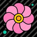 flower, gras, mardi, sunflower icon