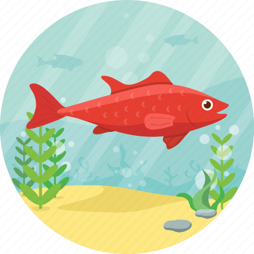 animal, fish, nature, pet, red, sea icon