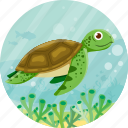 animal, nature, ocean, travel, turtoise icon