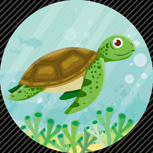 animal, nature, ocean, travel, turtoise icon