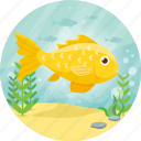 animal, fish, goldfish, pet, sea, yellow icon
