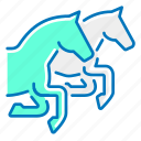competition, horse, horses, marketing