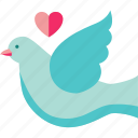 heart bird, love, love bird, love birds, love loves, lovers icon