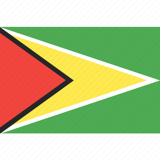 country, flag, guyana, nation, world icon