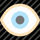 browsing, eye, not hidden, review, view