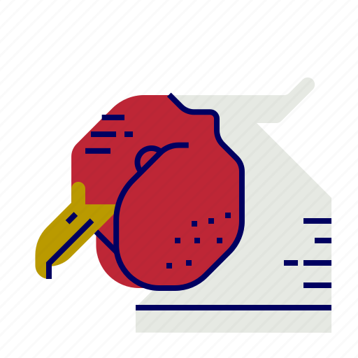 cooking, food, gastronomy, pheasant icon
