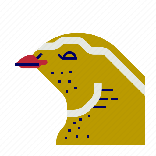 cooking, food, gastronomy, quail icon