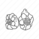 beef, beef cuts, beef meat, food, meat, meat cuts, tail icon