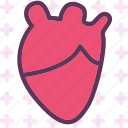 heart, human, love, organ icon