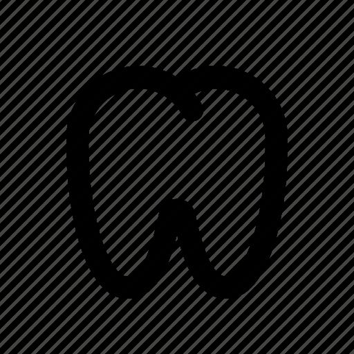 Dental, dentist, healthcare, oral, tooth icon - Download on Iconfinder
