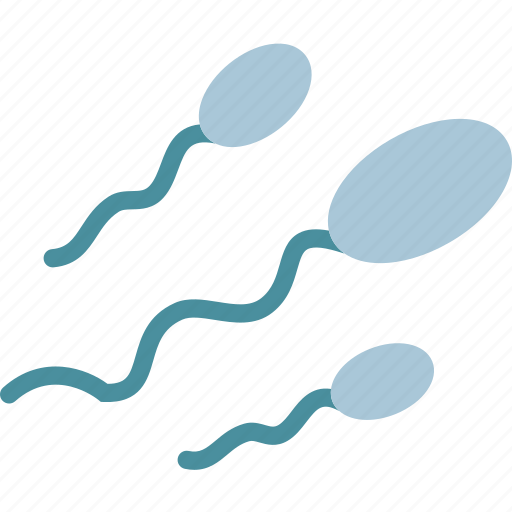 ejaculation, penis, reproduction, sperm icon