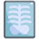 bone, health, healthcare, hospital, medical, radiology, xray icon