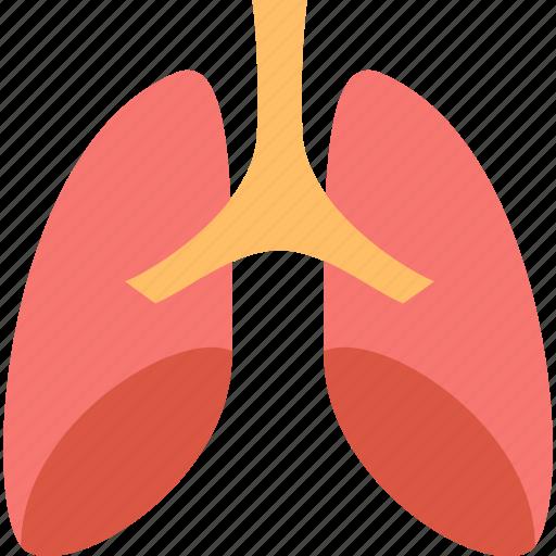 health, hospital, lungs, medicine, pulmonology, respiratory, treatment icon