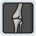 bone, medical, osteoporosis, x-ray icon