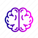brain, brainstorming, medical, mind, neurology, neuroscience