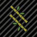 bamboo, spa, stick