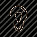 anatomy, audio, ear, listen