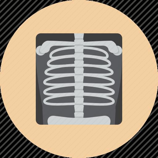 analyzes, medical, ray, skeleton, x icon