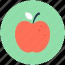 apple, diet, food, fruit, healthy food