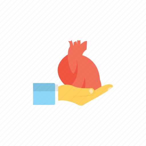 giving organ, heart transplant, life-saving, organ donation, organ donor icon
