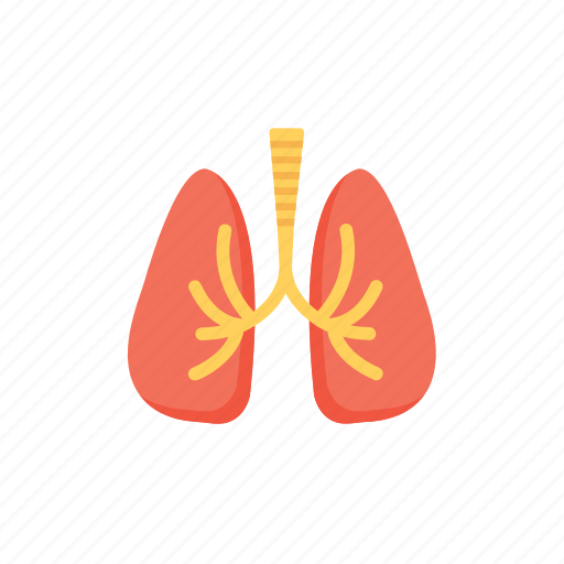 medical speciality, pneumology, pulmonology, respiratory tract, respirology icon