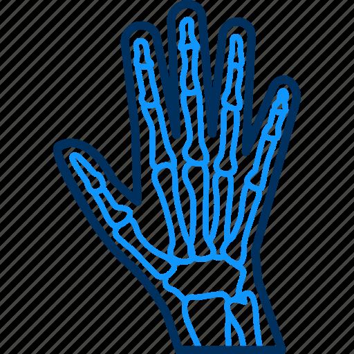 Gloves, hand icon - Download on Iconfinder on Iconfinder