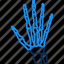 fingers, hand, xray icon