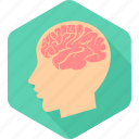 brain, head, human, man, medical, neurology, surgery icon