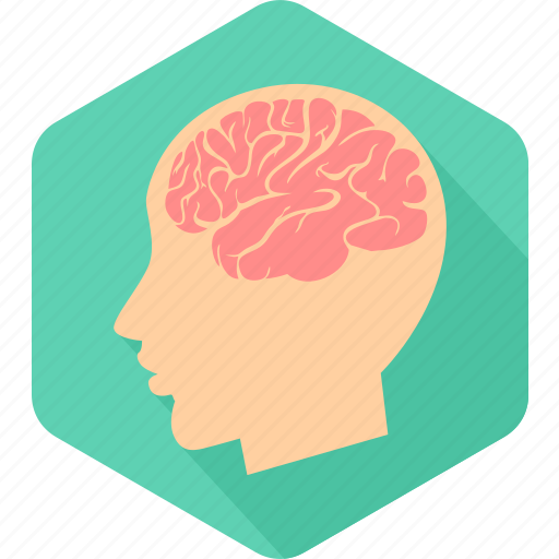 brain, head, human, man, medical, neurology, surgery icon