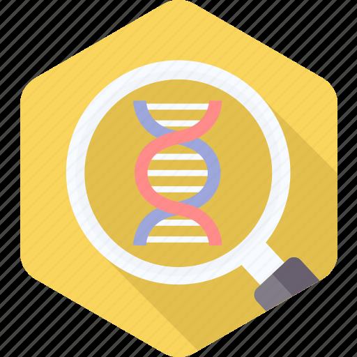 dna, genetic, genetics, genome, helix, molecule, science icon