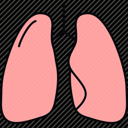 anatomy, bodypart, lung, lungs, medical, medicine, organ icon