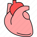 anatomy, attack, heart, heart attack, organ icon