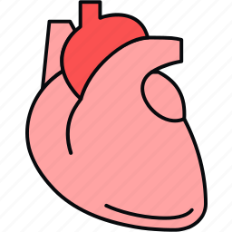 anatomy, attack, heart, heart attack, organ icon