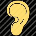 ear, body, human, part