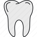 dental, dentistry, medical, stomatology, teeth, tooth icon