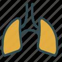 anatomy, lungs, organ icon