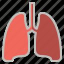 breathe, lungs, medical, organ, pulmonology