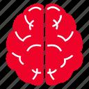 brain, care, medical, treatment icon