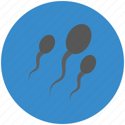 fertile, human sperms, semen, sperms, sperms cells icon