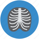 human, medical, radiology, radioscopy, ribs icon