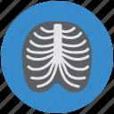 human, medical, radiology, radioscopy, ribs icon