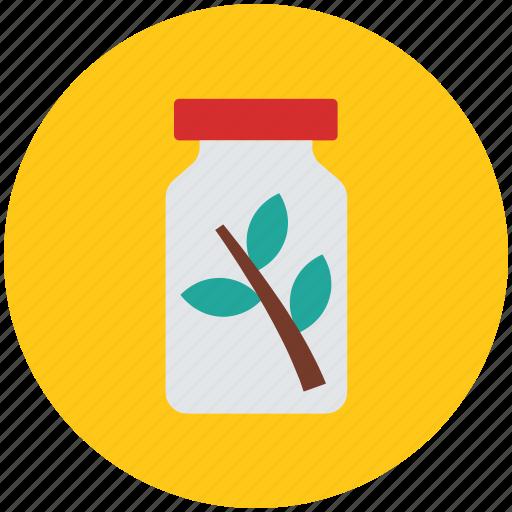 herbal bottle, herbal jar, jar, leaves, medicine, medicine jar icon