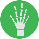 bones, hand, radiology, radioscopy, x-ray icon