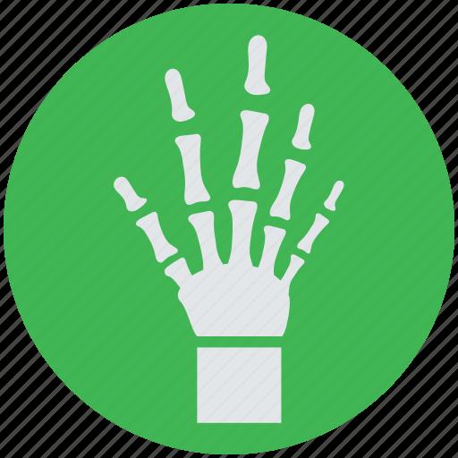 bones, hand, radiology, radioscopy, x-ray icon