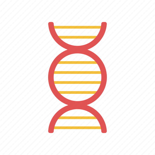 biology, dna structure, genetic, medical, science icon