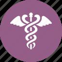 caduceus, healthcare, snake
