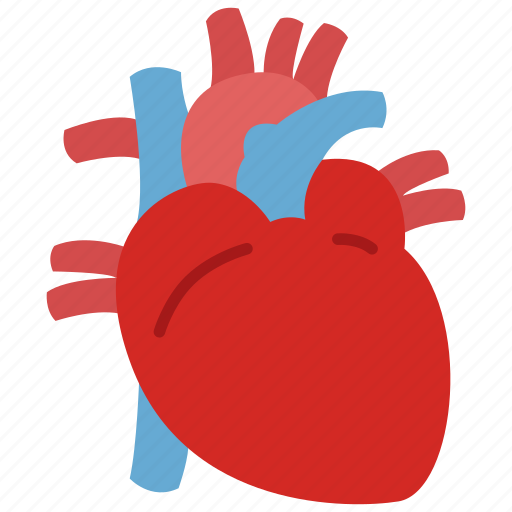 cardiology, heart icon
