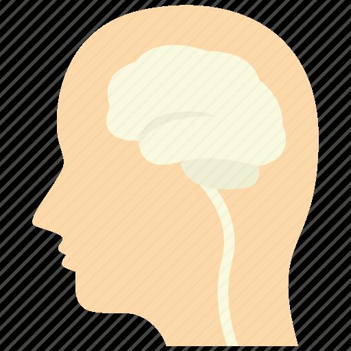 neuro, neurology, neuron, neurons icon